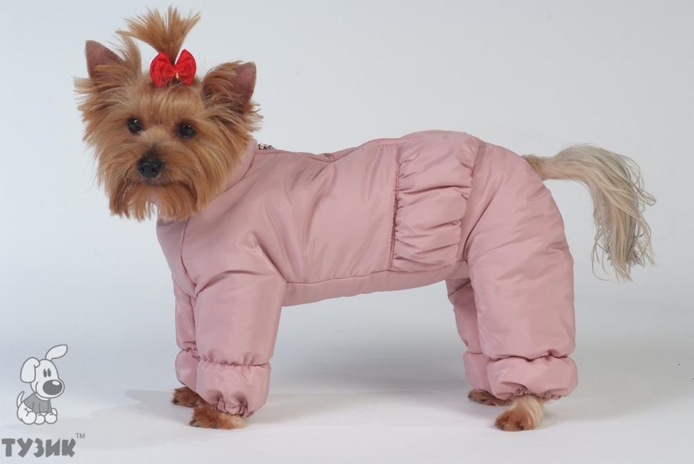 Одежда Для Собачек Купить