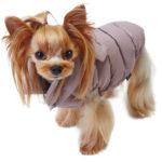 Верхняя одежда для собак