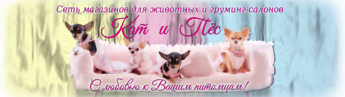 """""""Кот и Пёс"""" — сеть магазинов и груминг-салонов"""